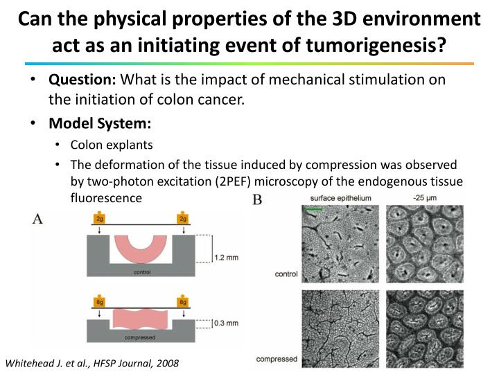 Can the physical properties of the 3D environment act as an initiating event of