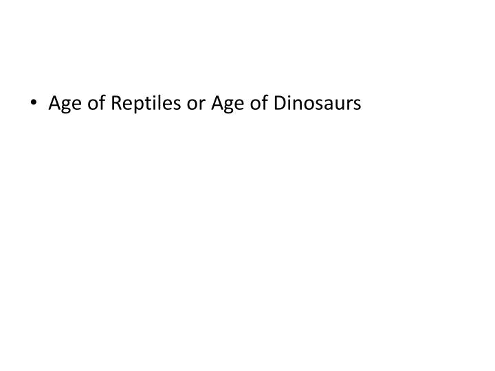 Age of Reptiles or Age of Dinosaurs