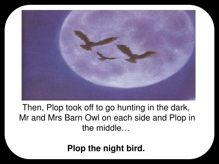 Then, Plop took off to go hunting in the dark,