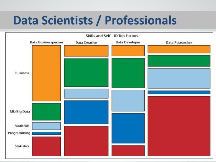 Data Scientists / Professionals