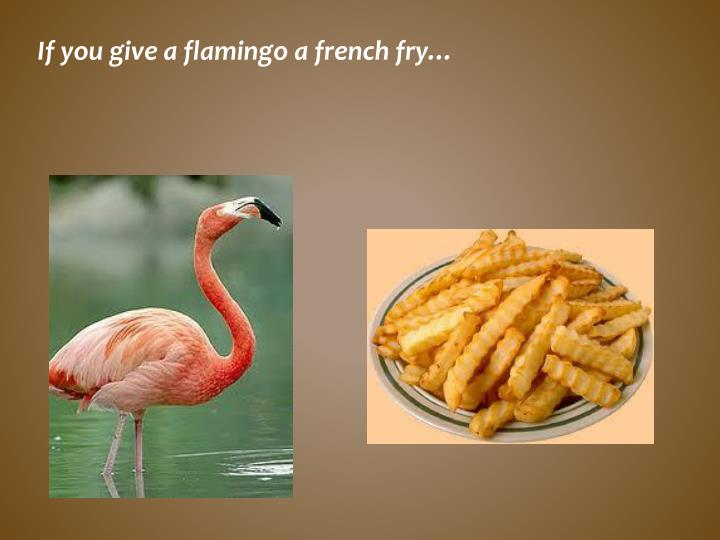 If you give a flamingo a