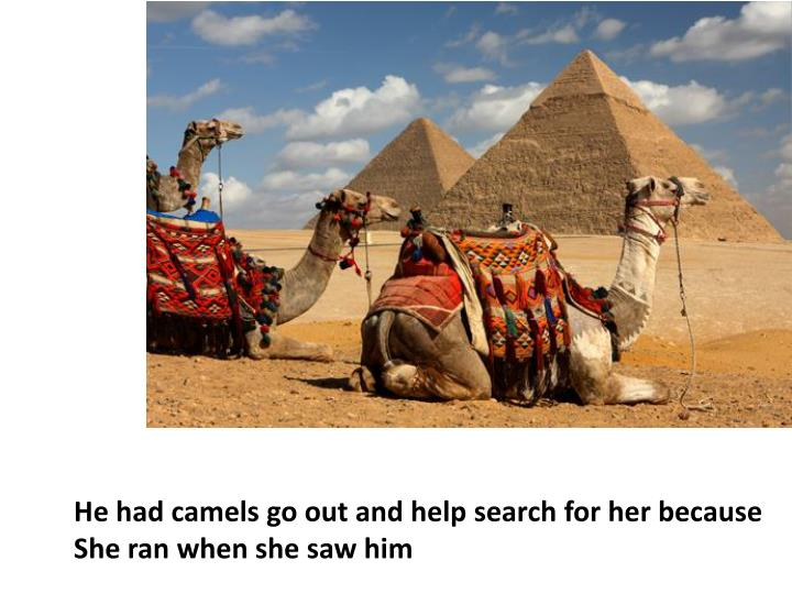 He had camels go out and help search for her because