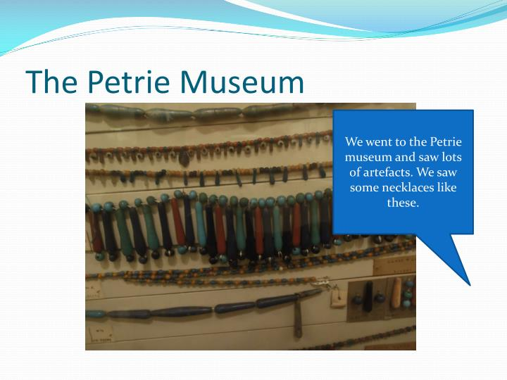 The Petrie Museum