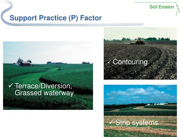 Support Practice (P) Factor