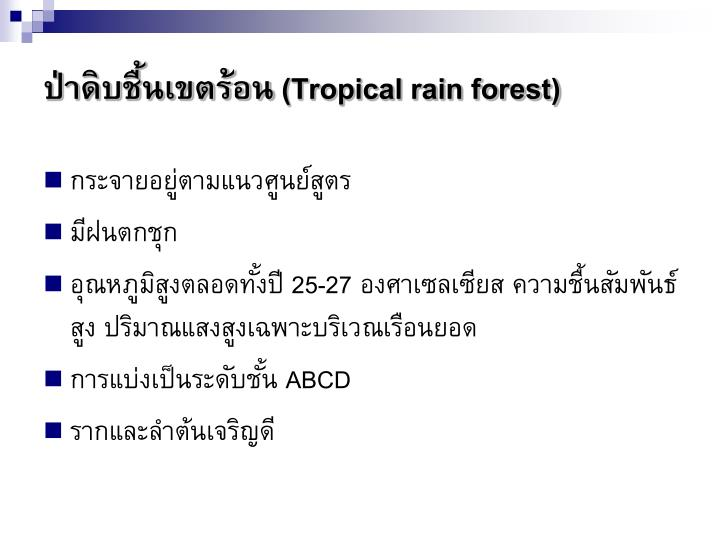 ป่าดิบชื้นเขตร้อน