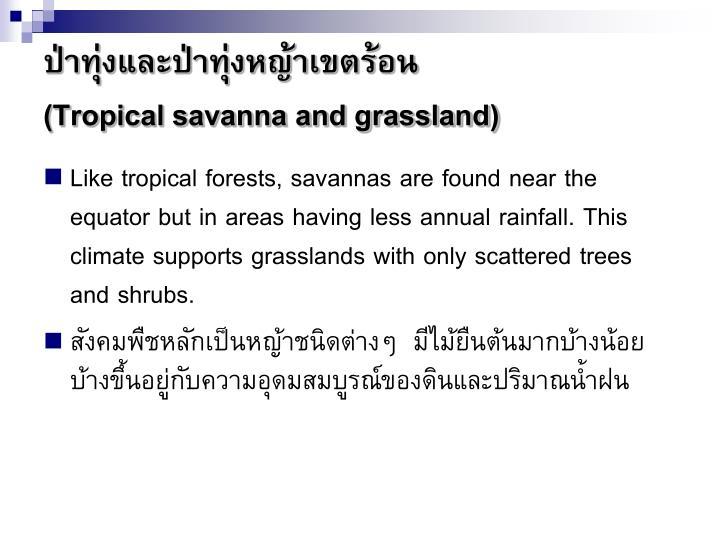 ป่าทุ่งและป่าทุ่งหญ้าเขตร้อน