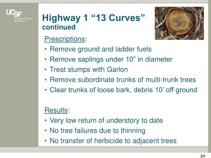 "Highway 1 ""13 Curves"""