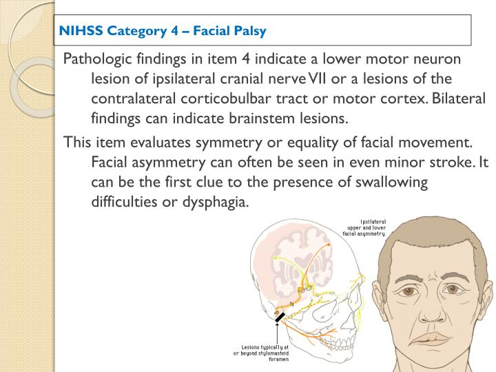 Nih crainial facial recommend you