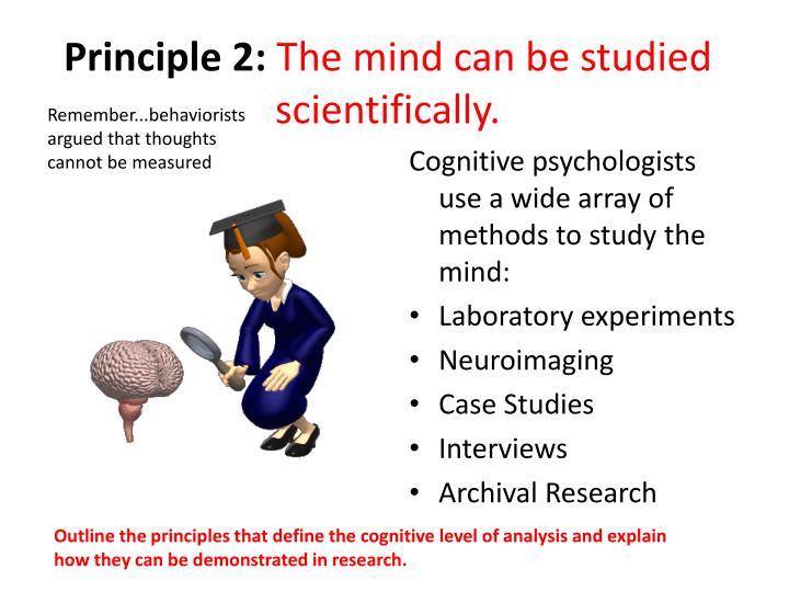 Principle 2:
