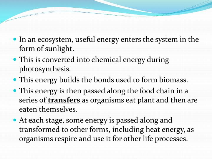 In an ecosystem, useful energy enters the system in the form of sunlight.