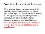 exception pyramide de biomasse