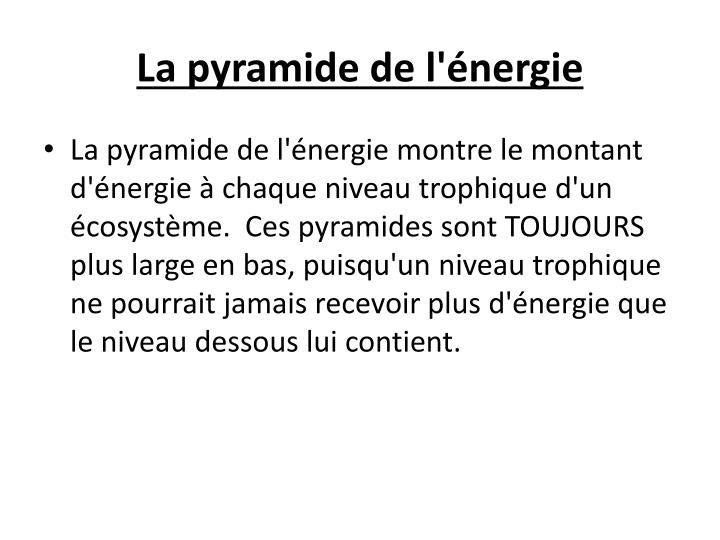 La pyramide de l'énergie