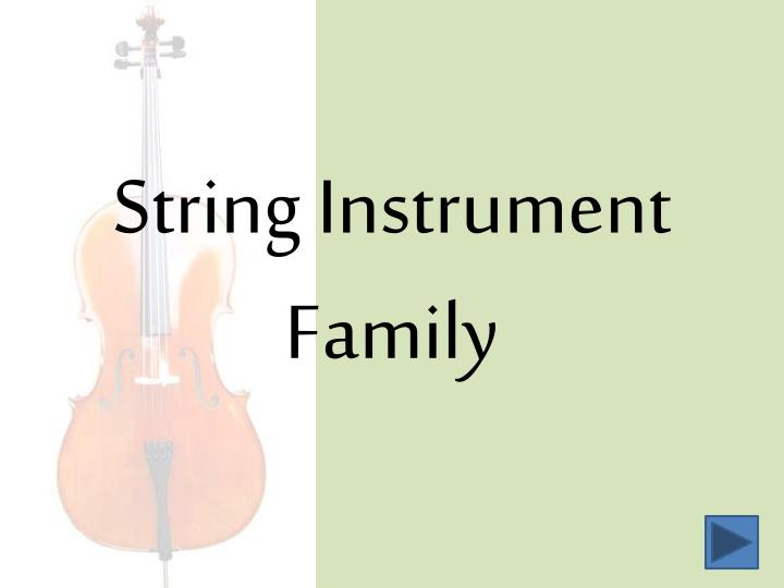 String instrument family