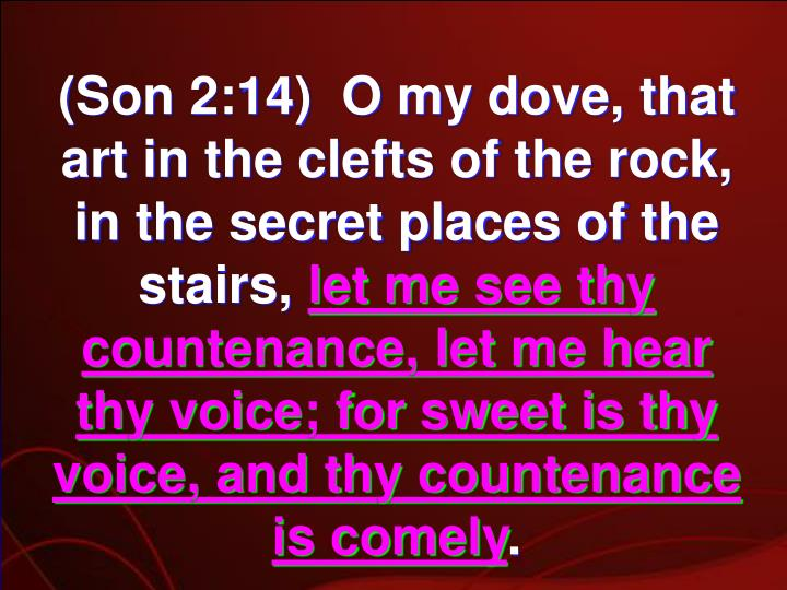 (Son 2:14)  O my dove, that art in the clefts of the rock, in the secret places of the stairs,