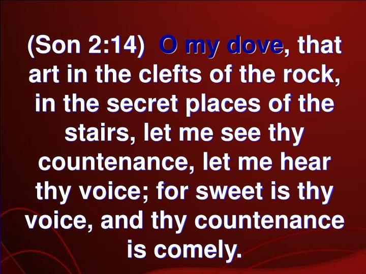 (Son 2:14)