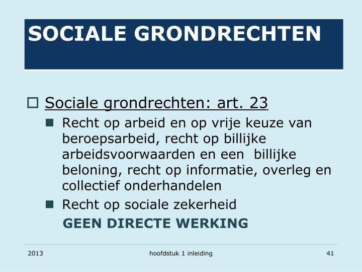 Sociale grondrechten: art. 23