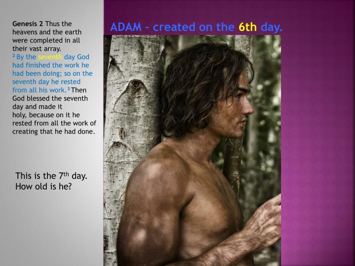 ADAM – created on the