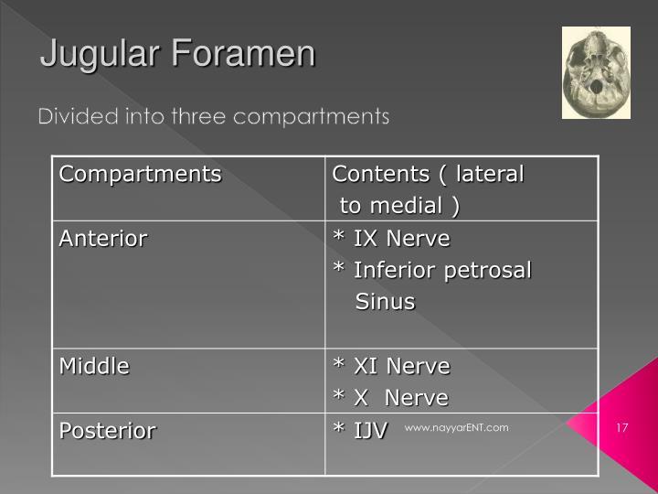 Jugular Foramen