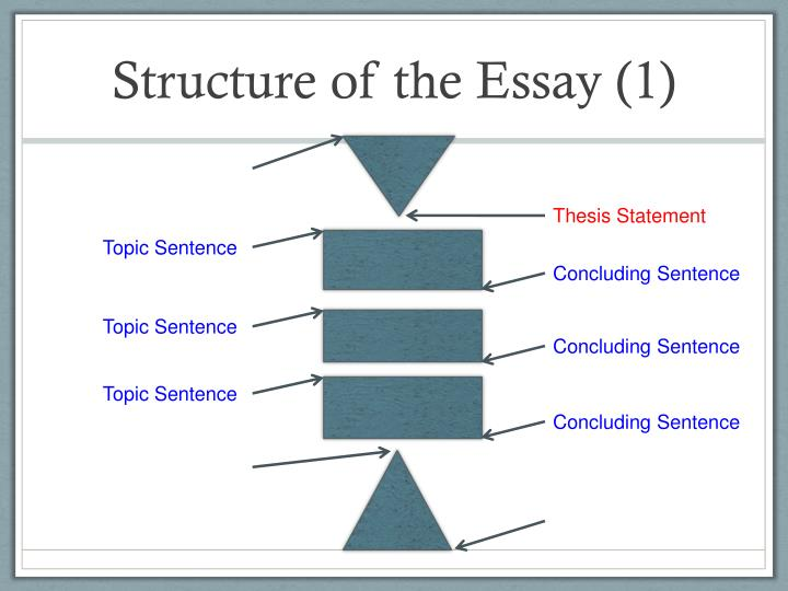 Structure of the Essay (1)