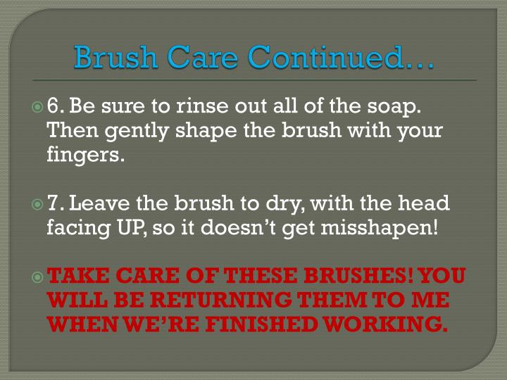 Brush Care Continued…