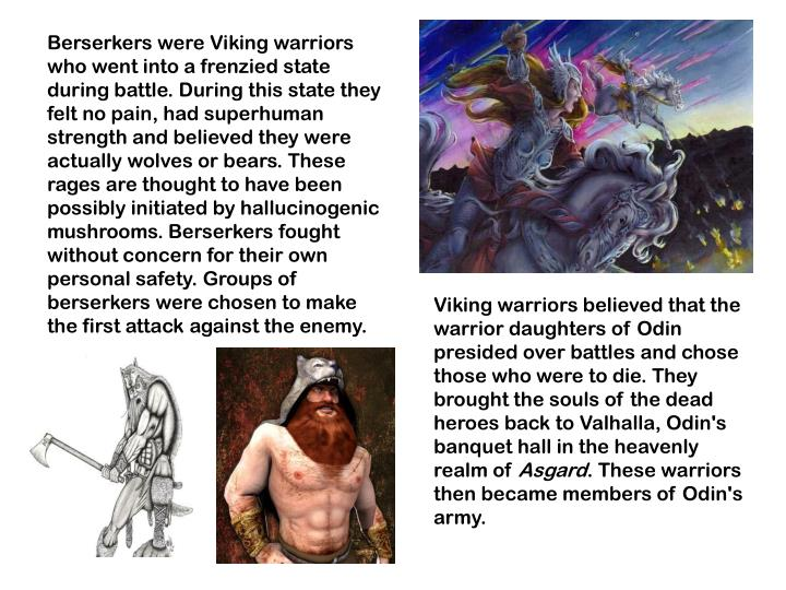 Berserkers were Viking warriors who went into a frenzied state during battle. During this state they felt no pain, had superhuman strength and believed they were actually wolves or bears. These rages are thought to have been possibly initiated by hallucinogenic mushrooms. Berserkers fought without concern for their own personal safety. Groups of berserkers were chosen to make the first attack against the enemy.