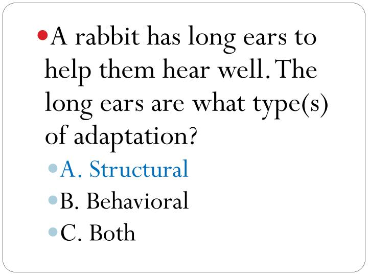 A rabbit has long ears to help them hear well. The long ears are what type(s) of adaptation?