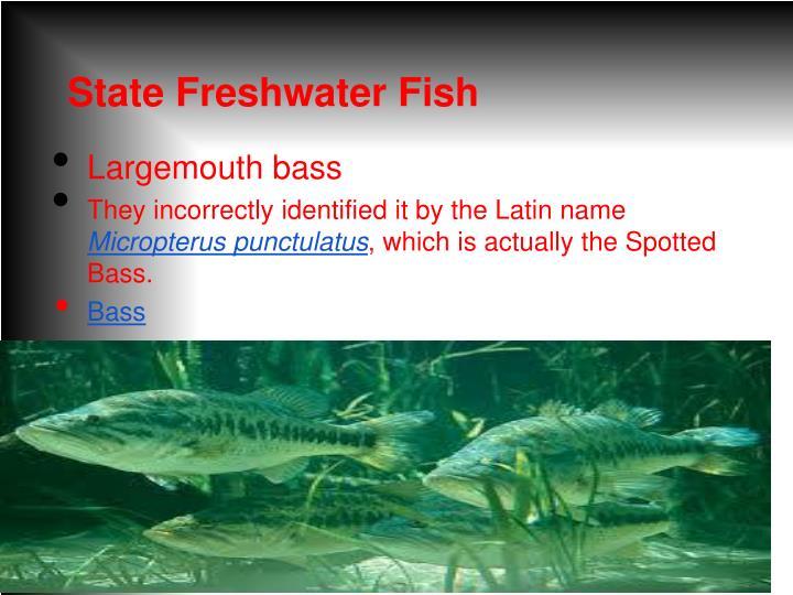 State Freshwater Fish