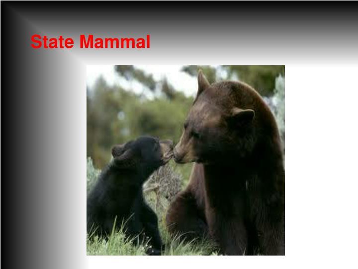 State Mammal