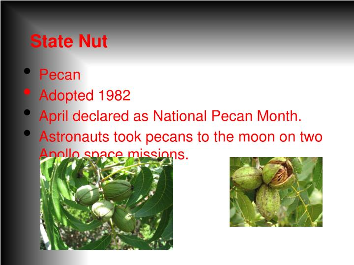 State Nut