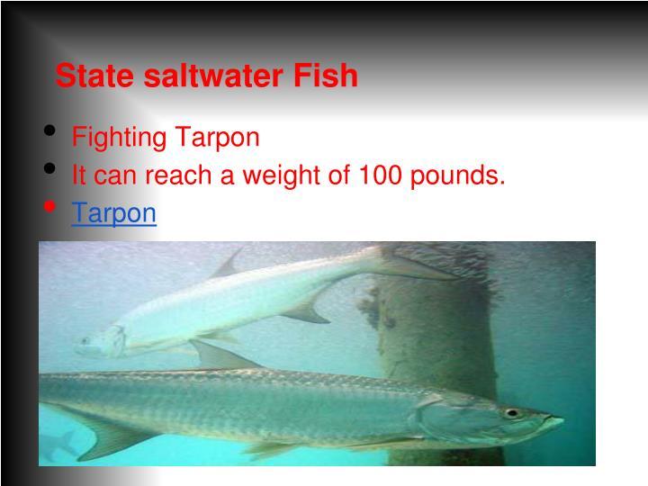 State saltwater Fish