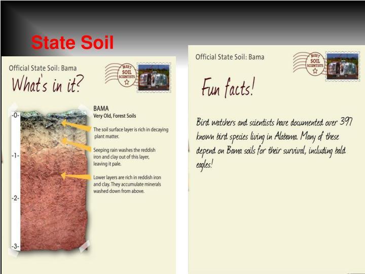 State Soil