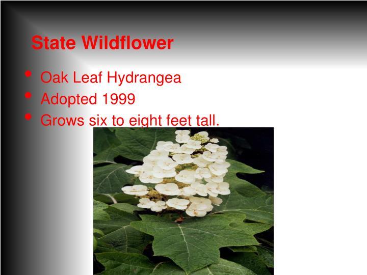 State Wildflower