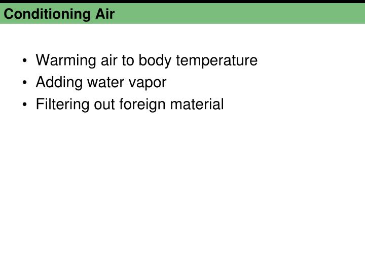 Conditioning Air