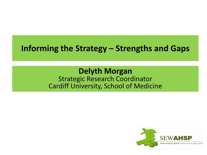 Informing the Strategy – Strengths and Gaps