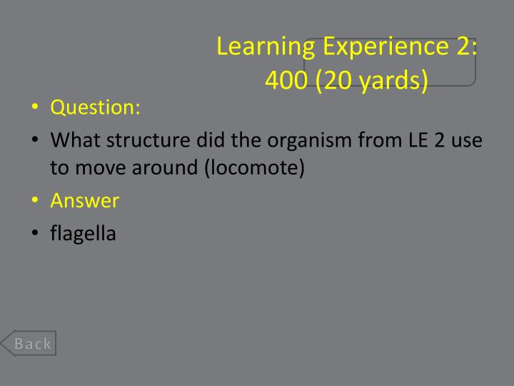 Learning Experience 2: