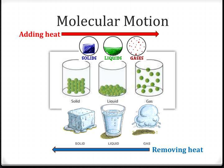 Molecular Motion