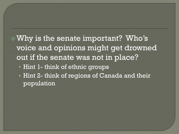 Why is the senate important?  Who's voice and opinions might get drowned out if the senate was not in place?