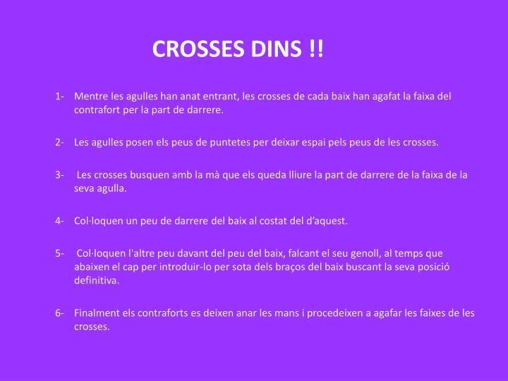 CROSSES DINS !!