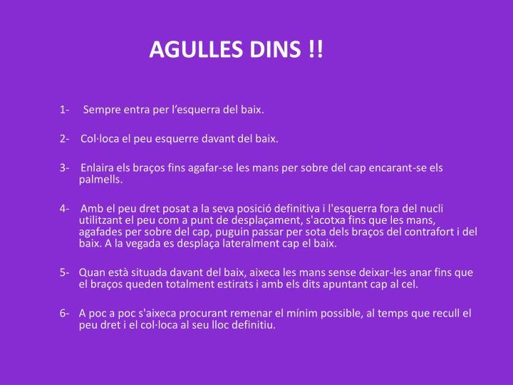 AGULLES DINS !!