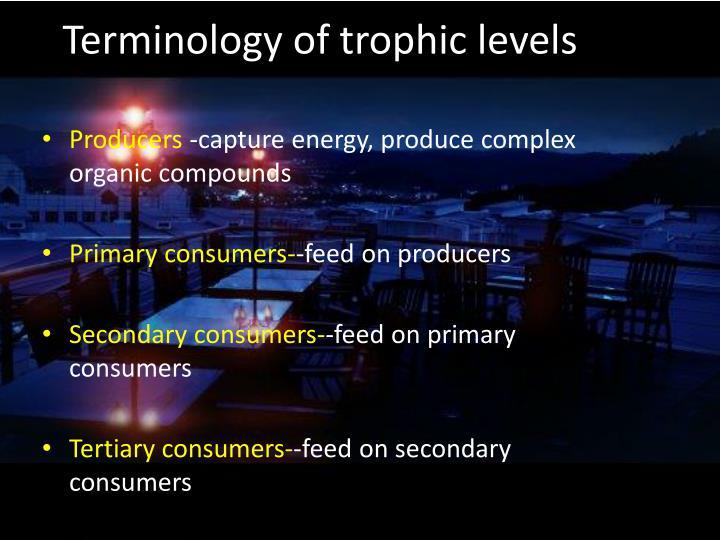 Terminology of
