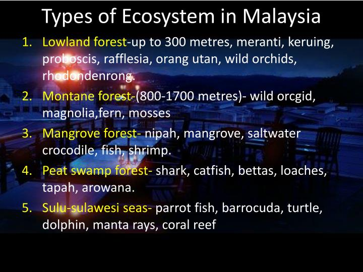 Types of Ecosystem in Malaysia