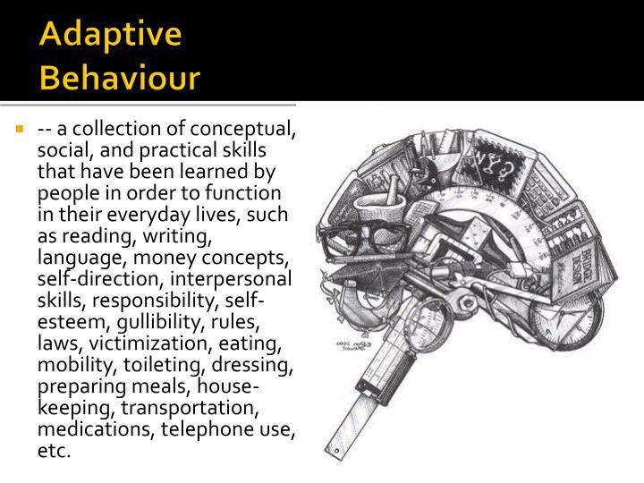 Adaptive memory essay