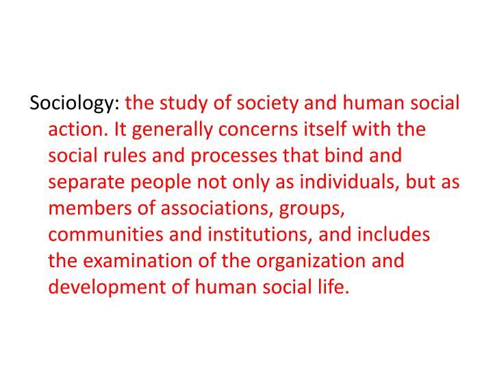 Sociology: