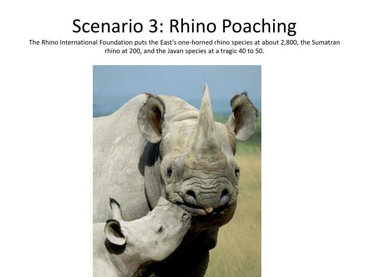 Scenario 3: Rhino Poaching