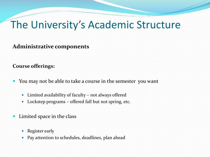 The University's Academic Structure