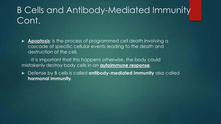 B Cells and Antibody-Mediated Immunity Cont.