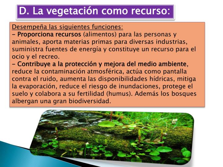 D. La vegetación como recurso: