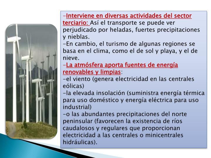 Interviene en diversas actividades del sector terciario: