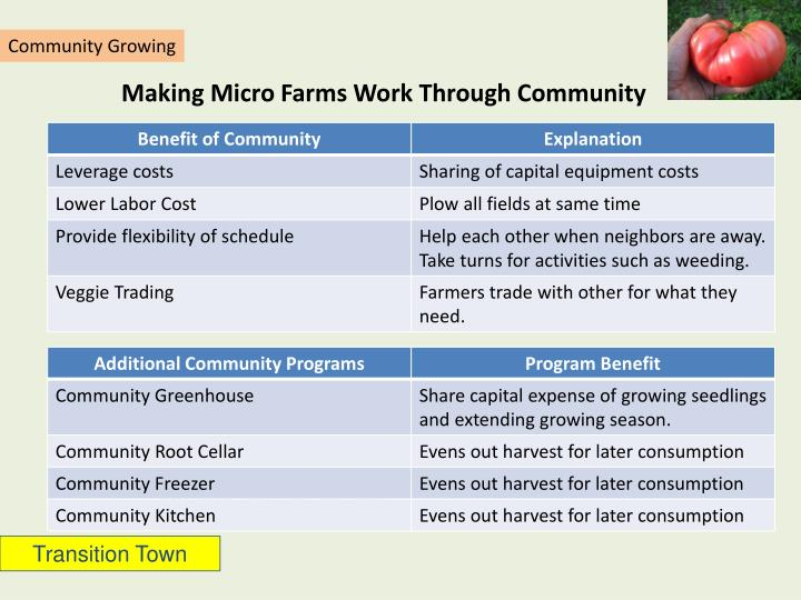 Making Micro Farms Work Through Community