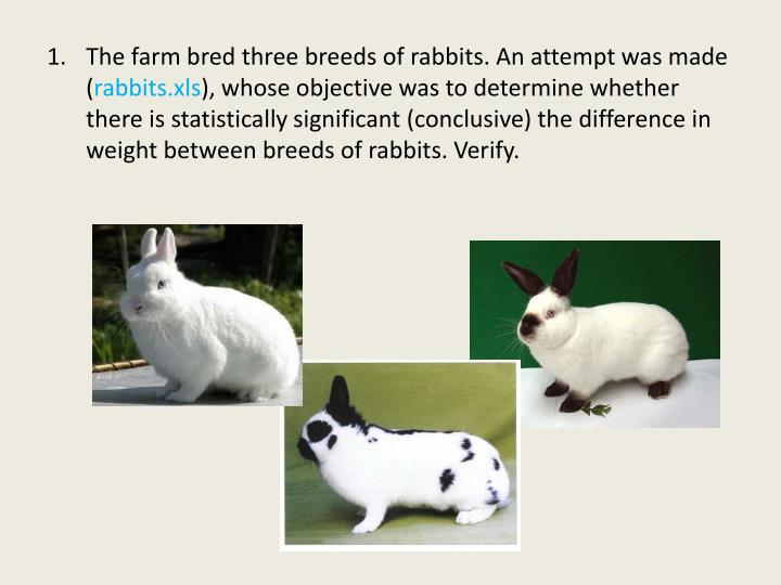 The farm bred three breeds of rabbits. An attempt was made